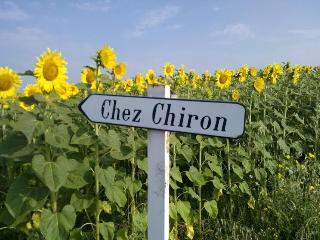 Chez Chiron, Chalais