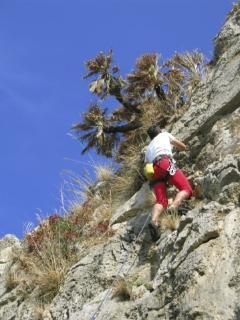 Free-Climbing in zona