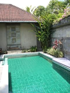 Private pool (with removable poolgate)