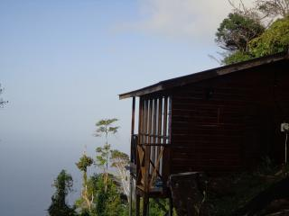 We sit perched above the forest canopy on Trinidad's North Coast
