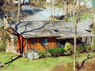 2 Bedroom Smoky Mountain Riverside Cabin with Hot Tub, Close to Downtown