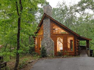 Romantic Private 1bedroom cabin,in Sky Harbor Resort 6miles to Gatlinburg TN