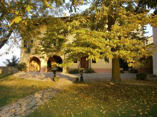 palazzo donadei, Clavesana
