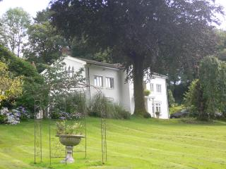 Maesquarre Hall - Manor House - sleeps 8, Ammanford