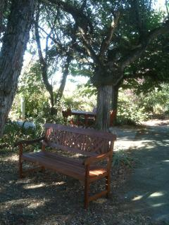 Lovely place to read overlooking little wooded area