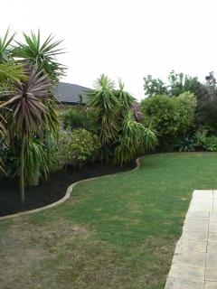 Manicured garden with native and tropical plants