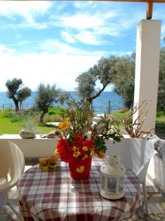 View from the veranda in the springtime