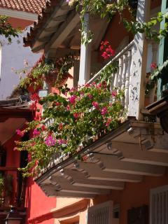 Flower boxes droop over balconies drawing attention to colonial facades