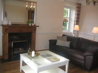 Lounge with gas fire and dual aspect windows