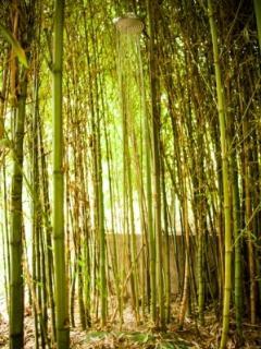 Chuveiro nos Bamboos do Glamping