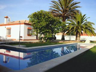 El Abeto. A bright villa with a massive 15m long pool. Shallow end for kids too.