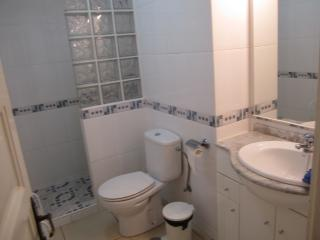 bathroom with shower and vanity basin