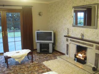 Part of spacious Lounge featuring patio doors,TV and fireplace.
