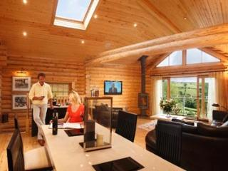 Modern Living Space with Log Fire