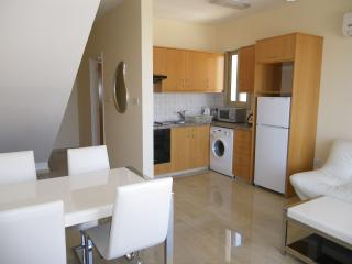 225 penthouse kitchen and dining