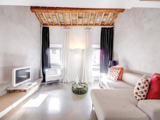 Luxury Attic with Terrace