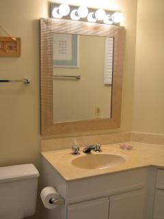 Master Bedroom Bath