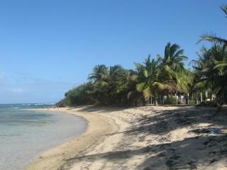 Andy Casa Del Caribe, Isla de Vieques