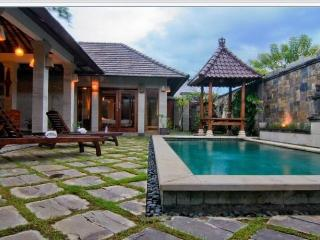 Oasis Villa - Stay 7 Pay 6 in Jan - Feb 2017, Sanur