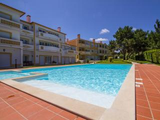 Well equipped 2 bed.apartment, Obidos