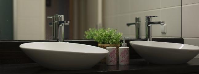 Large mirror and twin-washbasins