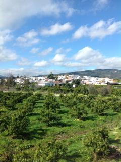 Breathtaking views across the orange grove to the village