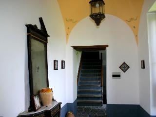Suite Alimuri