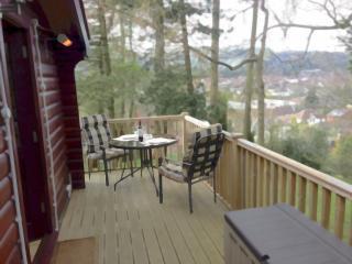 LARCHES RETREAT: Norwegian lodge, log burner & spa, Church Stretton