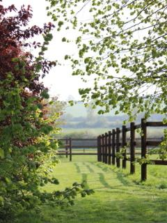 Beautiful views of the stud farm and surrounding countryside
