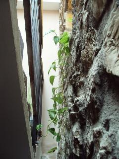 Vista desde la escalera