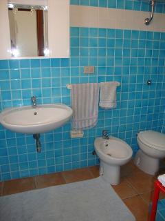 bagno con doccia e lavatrice . L'appartamento dispone di ulteriore bagno con doccia