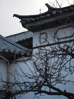 A corner of the courtyard