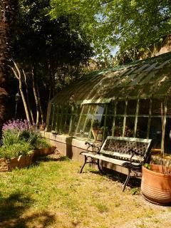 jardin avec  vue  sur  serre