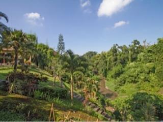 Blick in die 'Valley of Praise' und den Fluss 'Ayung'
