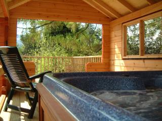 Birchwood Lodge, Loch Tay - Private Hot Tub+Sauna, Fearnan