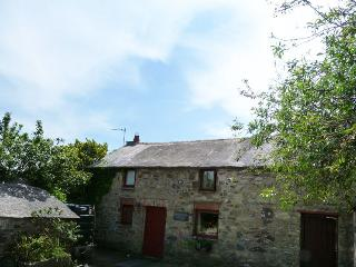 Cosy cottage in Solva - 23221