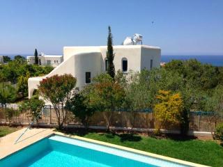 5995-Paphos Villa