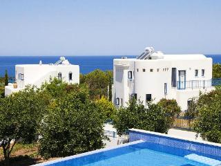 5993 - Paphos Villa
