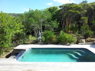 Swimming pool on the deck surrounded by natural fynbos vegetation