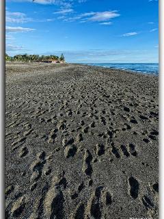 Playa Granada beach, restaurants, golf club, nautic sport club and pubs.