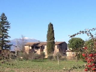 Casale Luna tra gli ulivi, Viterbo