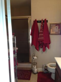 Updated Onsuite master bath with shower