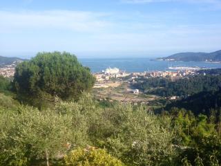 Villa Castelletto close to Cinque Terre, La Spezia