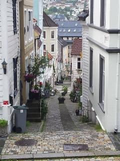 Our street, Strangebakken. Photo taken July 2014.