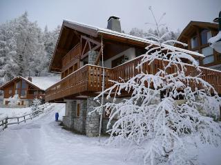 Le Cairn - 12-14p traditional Savoyard Chalet in Ski in/Ski out Bellecote Park