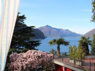 Barony for 2 persons and dog near lake, airconditioning, shared pool, Lugano