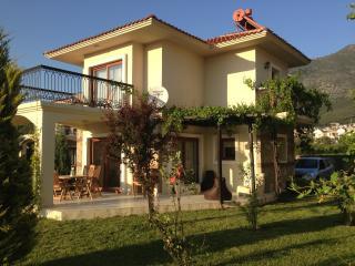 Turkey holiday rental in Aegean, Ovacik-Fethiye