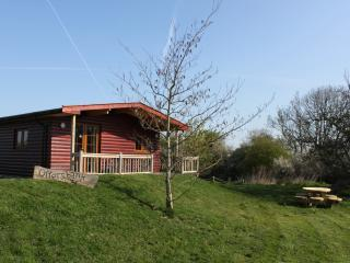 Luxury log cabin on the beautiful Somerset levels (Otters Bank)