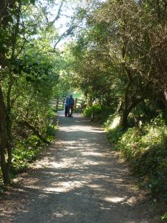 Hire bikes or walk to Robin Hoods Bay on the old railway! Only 2miles, and you can catch bus back!
