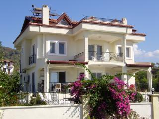 VILLA RUYA, private villa with own pool and sea views.